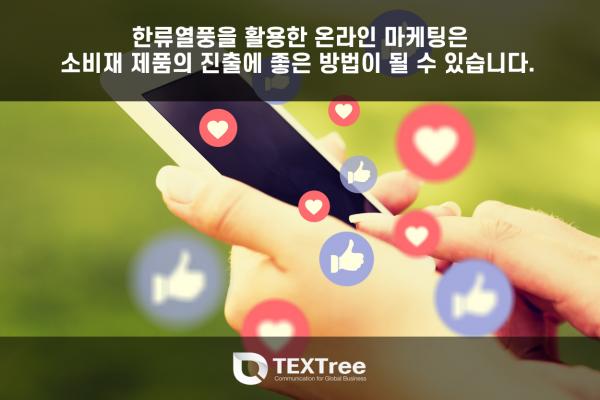 한류열풍을 활용한 온라인 마케팅이 효과적일 수 있습니다.