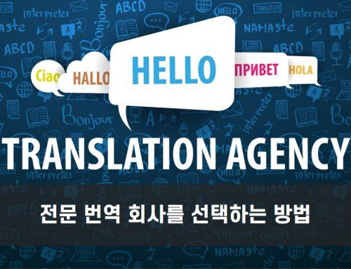 전문 번역 회사를 선택하는 방법